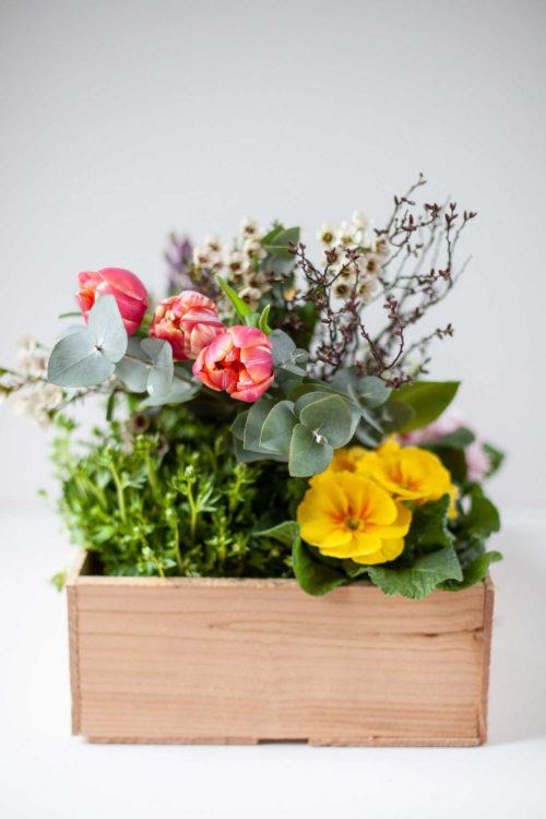 Blumenkiste Zauberblütenkiste saisonal frisch verfügbar Blumenladen Vlotho Exter online bestellen
